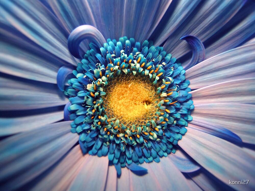 Blue flower! by konni27