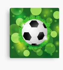 sport ball Canvas Print