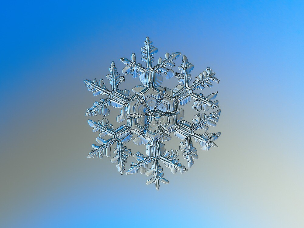 Gardener's dream, real snowflake macro photo by Alexey Kljatov