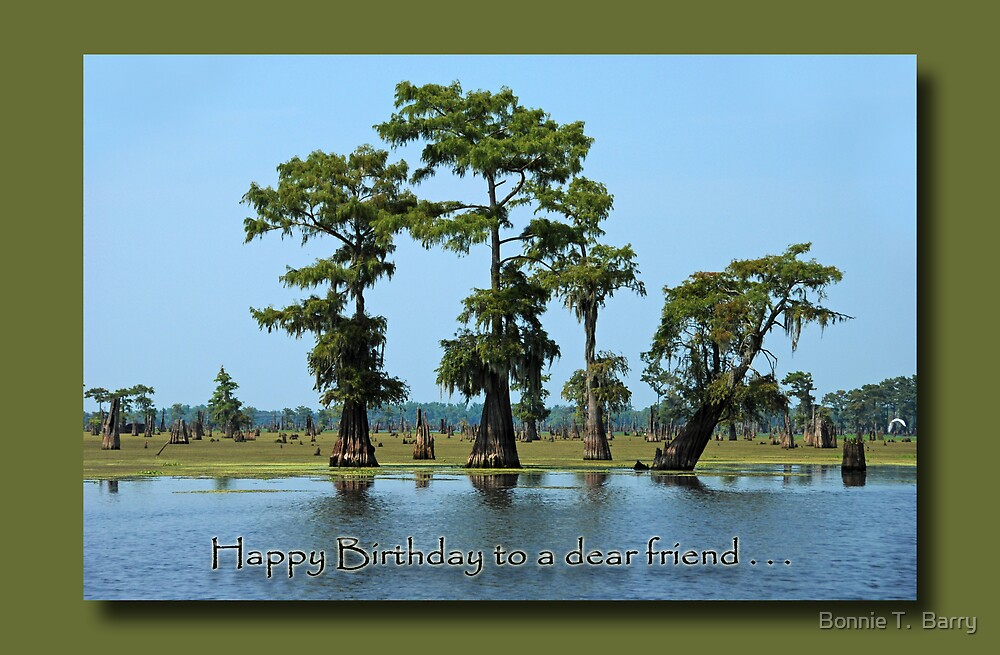 Happy Birthday to a Dear Friend by Bonnie T.  Barry