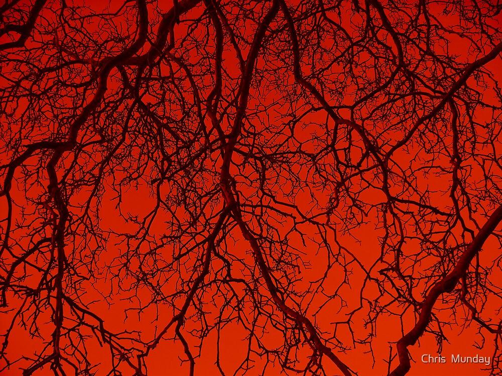 Veins by Chris  Munday