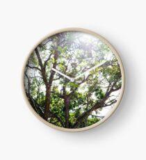 Fairy lights - spring trees Clock