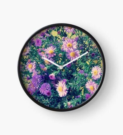 Dendranthema Clock