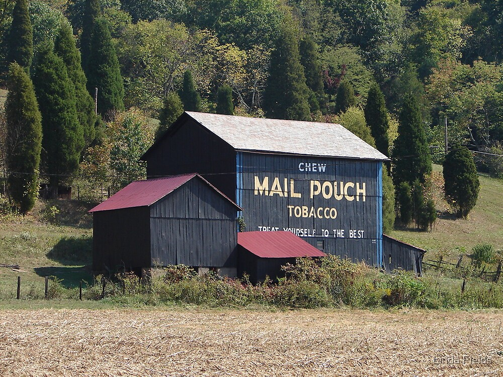Mail Pouch Barn by Linda Fields
