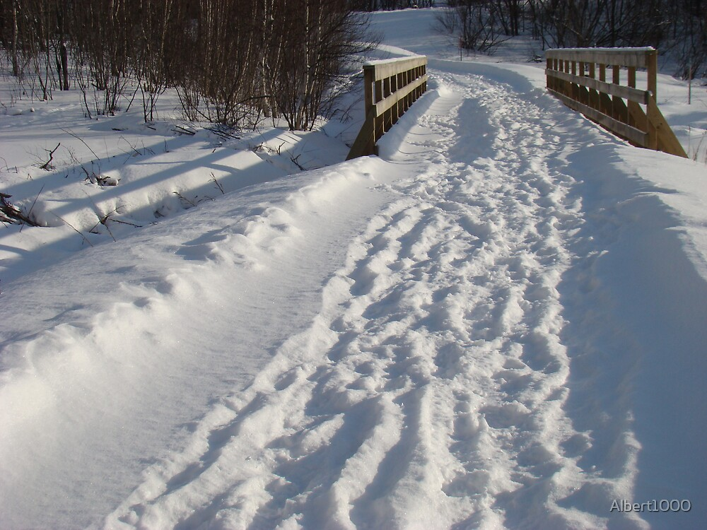 Winter path by Albert1000