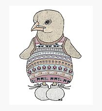 Little Chicken Knit Photographic Print