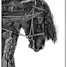 Horses Tale by Margaret Metcalfe