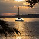 Golden Light - sunset at Eden NSW, Australia by LisaRoberts