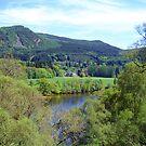 Near Pitlochry by Tom Gomez