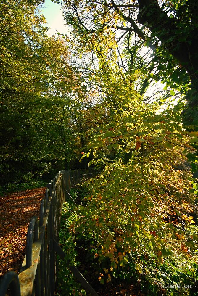 Williamson Park Lancaster - 5 by Richard Ion