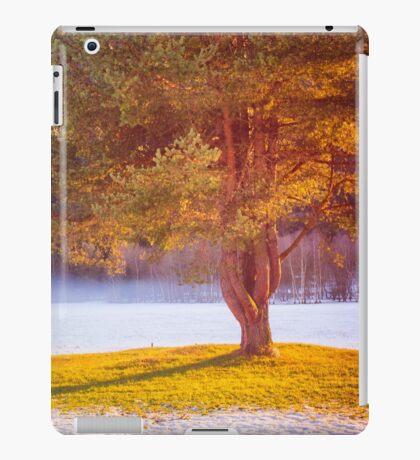 Big tree in the mist iPad Case/Skin