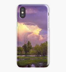 Spring Flooding iPhone Case/Skin
