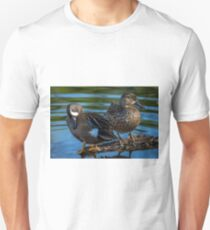 Blue-winged Teal Pair - Dabbling Ducks Unisex T-Shirt
