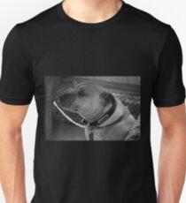 Nanny Dog Unisex T-Shirt