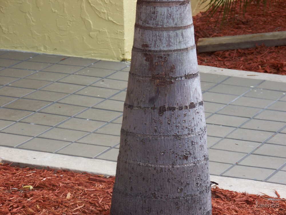 Tree Bottom by karen66