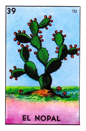 Image result for loteria el nopal