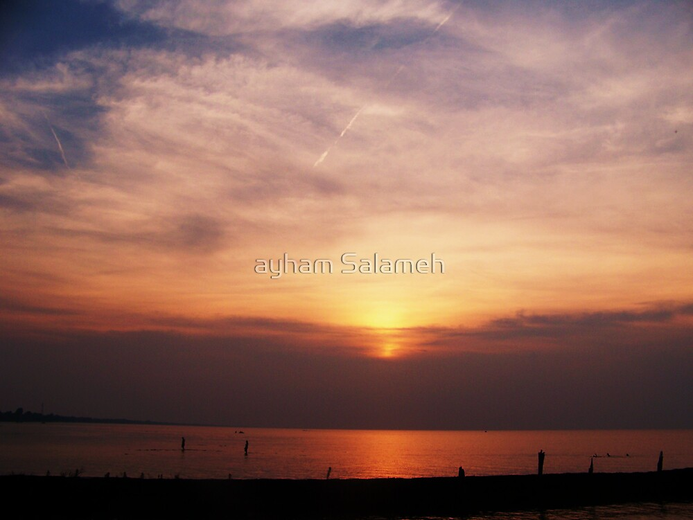 Sunsets on Lakeshore  by ayham Salameh