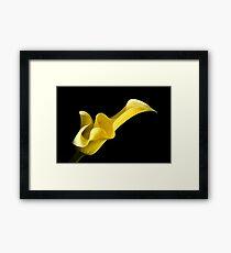 Flower (Yellow) Framed Print