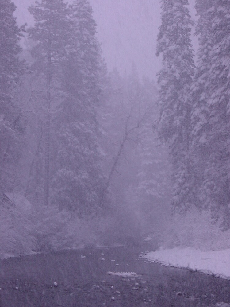 winter wonderland by Ryan Emerson