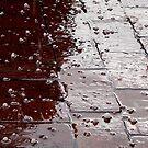 Rain with Hail by iamelmana