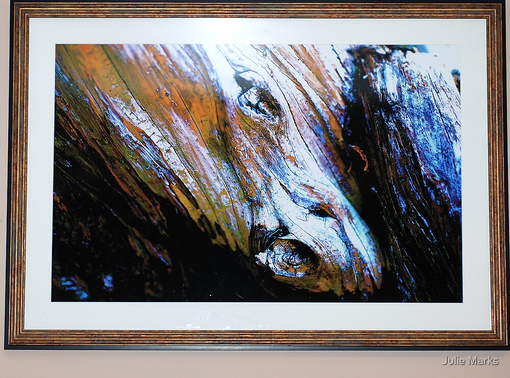 Framed Equine Abstract by Julie Marks