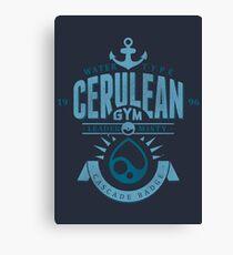 Cerulean Gym Canvas Print