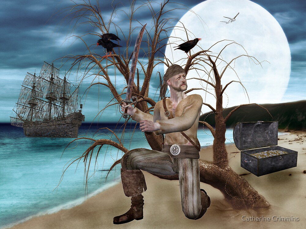 A Pirate And His Treasure by Catherine Crimmins