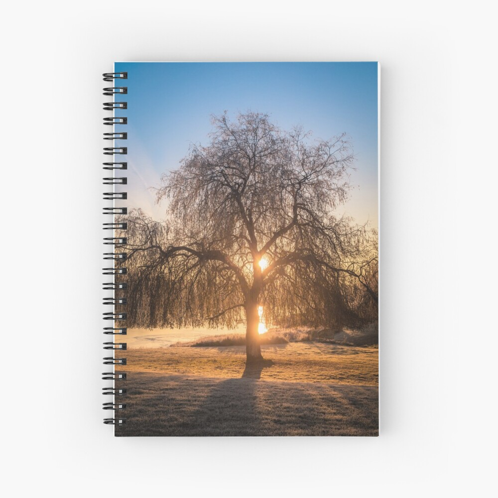 Weeping Willow Tree Sunrise  Spiral Notebook