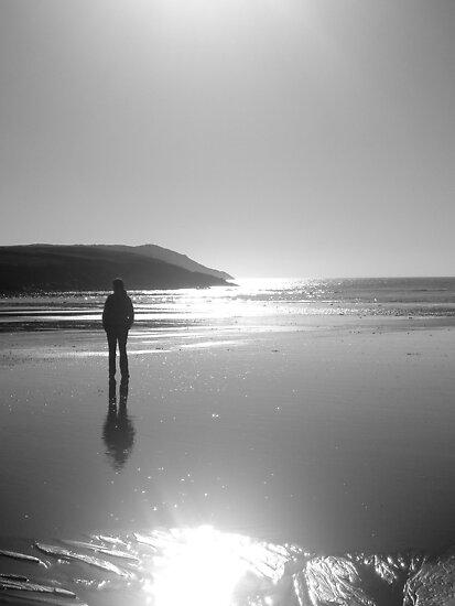 The Bay by Paul Finnegan