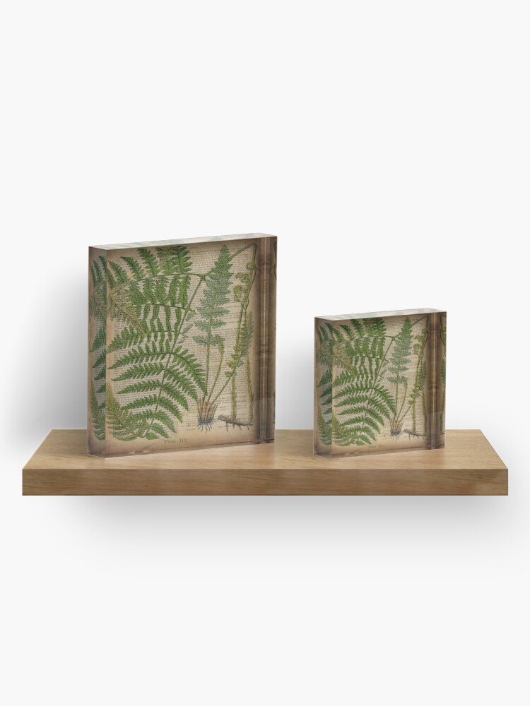 Alternate view of vintage foliage hipster botanical print fern leaves Acrylic Block