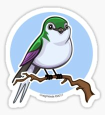 Violet Green Swallow over Blue Sticker