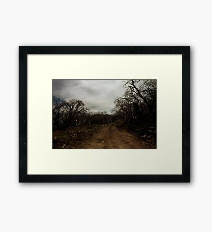 No#3 Track, Mt Stirling Framed Print
