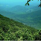 BLUE Ridge HILLSIDE ^ by ctheworld