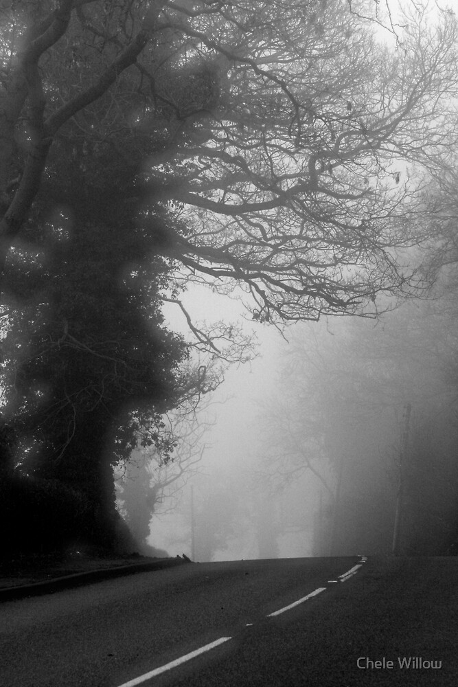The Road to Fog by Chele Willow