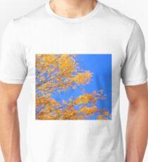 Golden Tree Autumn Leaves Blue Sky Photograph T-Shirt