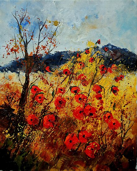 Red poppies in Provence by calimero