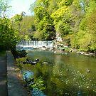 Almond River walk by Tom Gomez