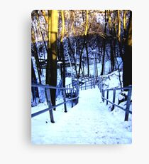 ravine stairs Canvas Print