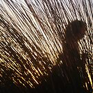 Woman Dancing Behind Grass - Shooters Gallery by Anthea  Slade