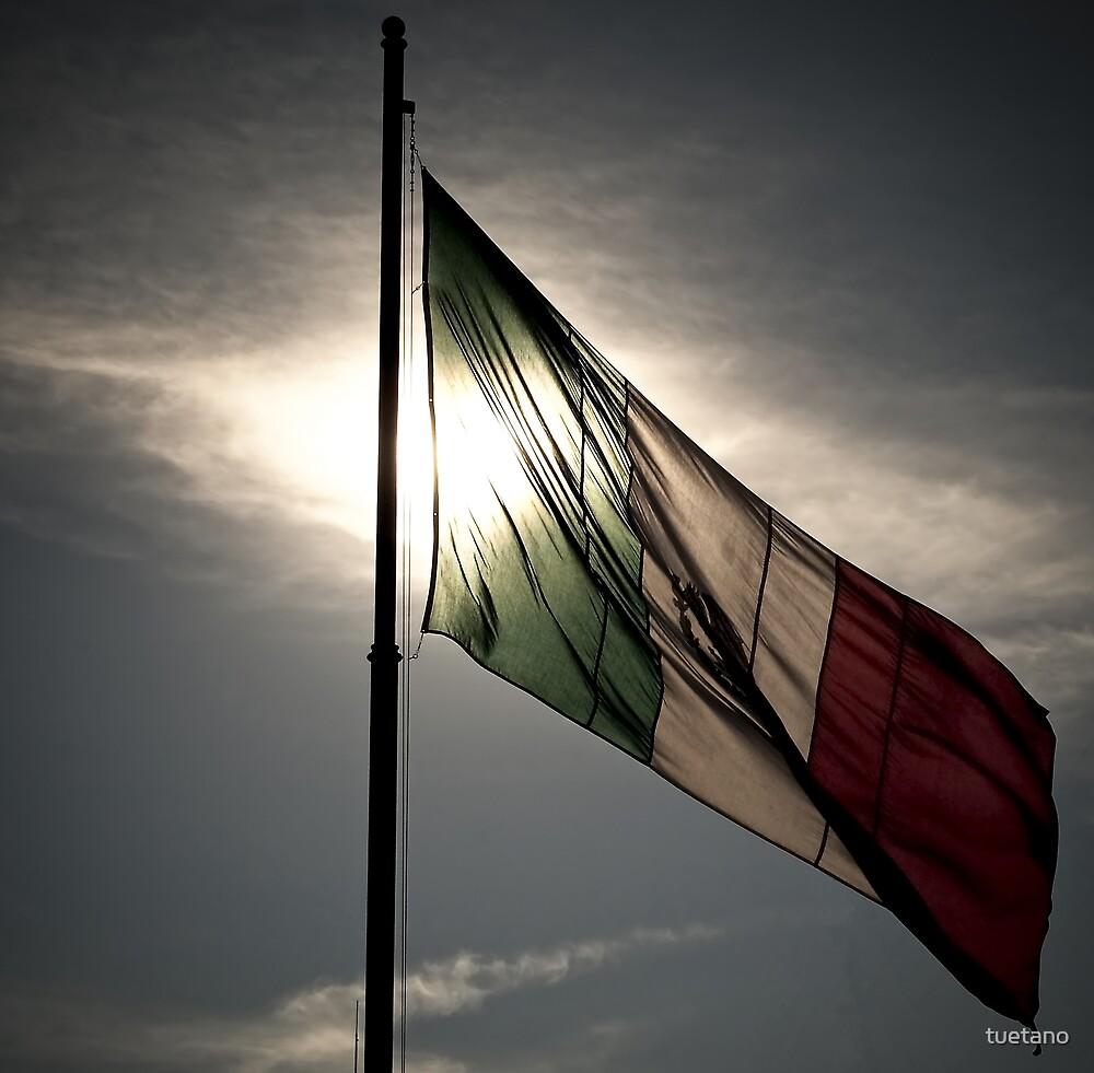 mexican flag by tuetano