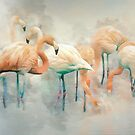 Flamingo Fantasy by Brian Tarr