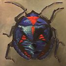 Jewel beetle by Glenda Jones