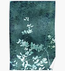 Weathered Floral Poster