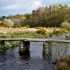Clapper Bridge at Postbridge, Devon, UK by Photography  by Mathilde