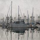 Nebel in der Marina von Celeste Mookherjee