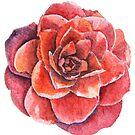 « Fleur de Camélia à l'aquarelle » par cindybarillet