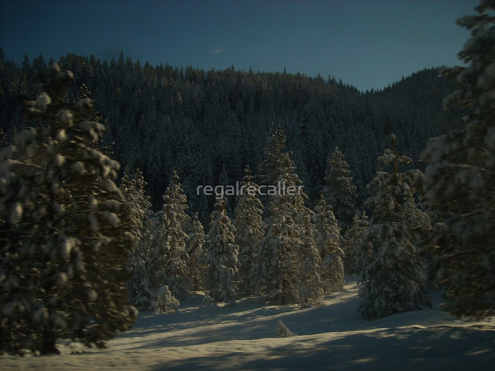 Weighted Boughs by regalrecaller