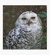 Dream Creatures, Snowy Owl 001, DeepDream (Schnee-Eule) Photographic Print