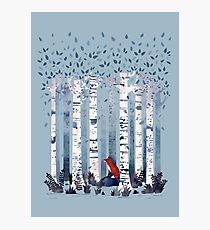 The Birches (in Blue) Photographic Print
