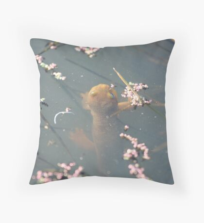 California Newts 3 Throw Pillow